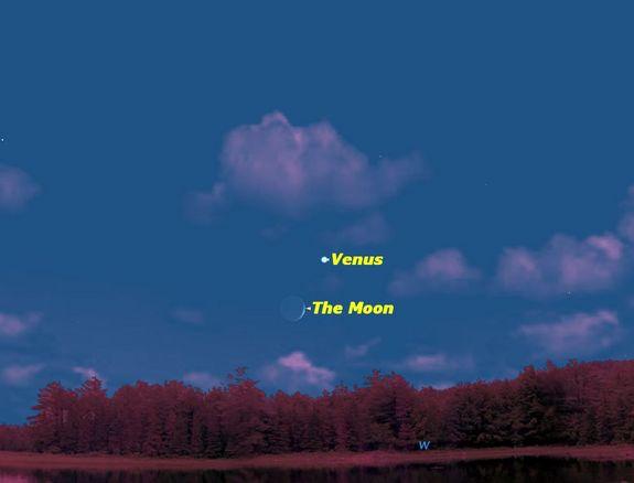 Венера и Луна светят в паре 9 августа