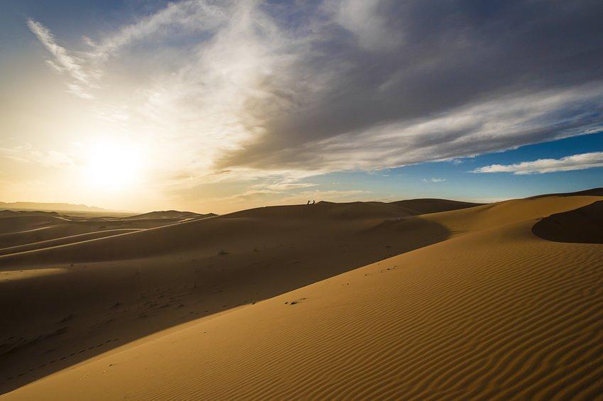 К возникновению Сахары привела деятельность человека— Археолог