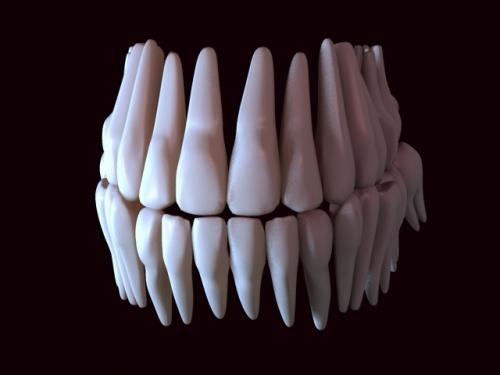 Картинки по запросу печать зубов
