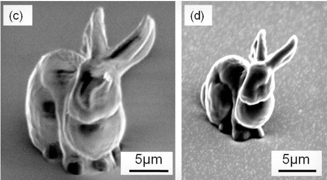 Микроскопический кролик поможет в борьбе с расстройствами мозга
