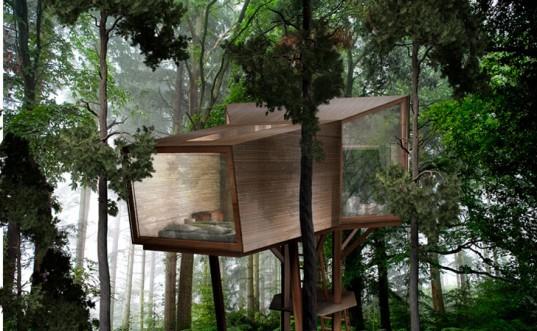 Необычное: Дом на дереве