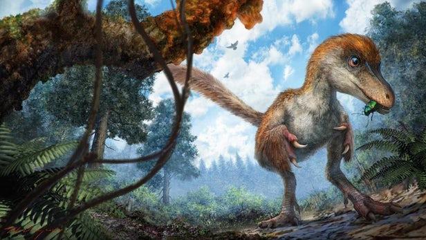 Ученые планируют переписать родословную динозавров