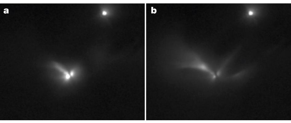 Две протозвезды формируют двойную звездную систему