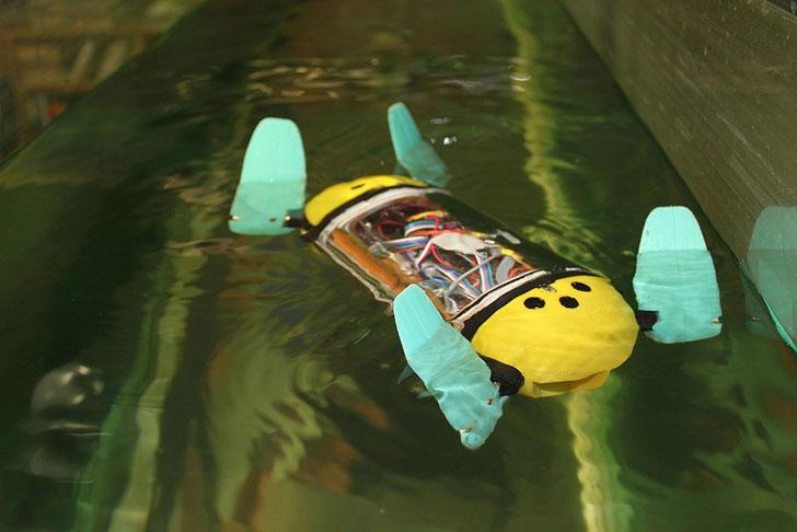 Робот-черепаха помогает исследовать затонувшие корабли