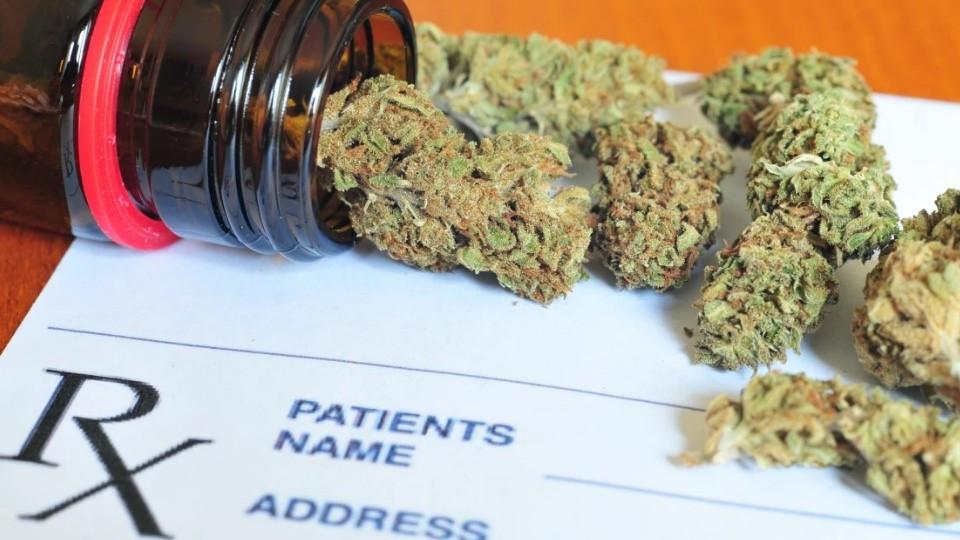 Показания для лечебной марихуаны семинар конопли